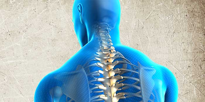 Scaravelli, Yoga, Workshop, Spine, Back, Breath Catherine Annis, London, UK, Europe, Awakening