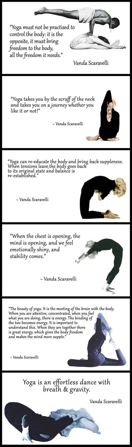 Best Yoga Quote Collection By Vanda Scaravelli Catherine Annis