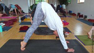 Scaravelli, Yoga, Brighton, Sussex, 2020