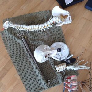 Scaravelli, Yoga, Retreat, Weekend, Sussex
