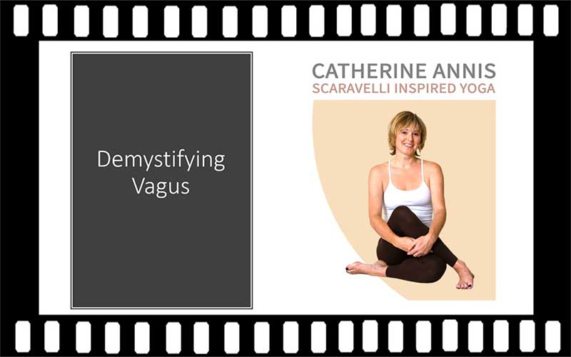 Vagus Nerve, Scaravelli Inspired Workshop, Demystify, Catherine Annis Yoga