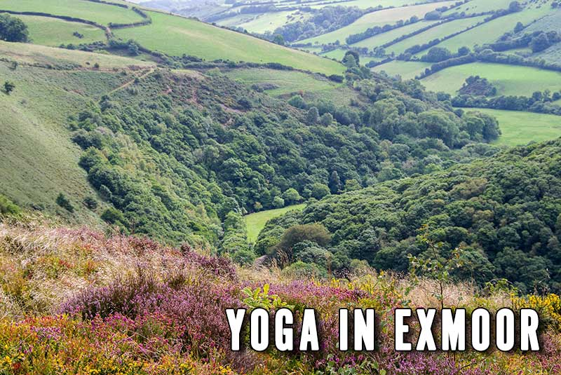 Yoga in Exmoor, Class, Teacher, Somerset, Devon, Dulverton. Hatha, Scaravelli