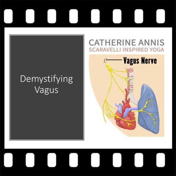 Vagus Nerve, Scaravelli Inspired Yoga, Workshop, Catherine Annis, video