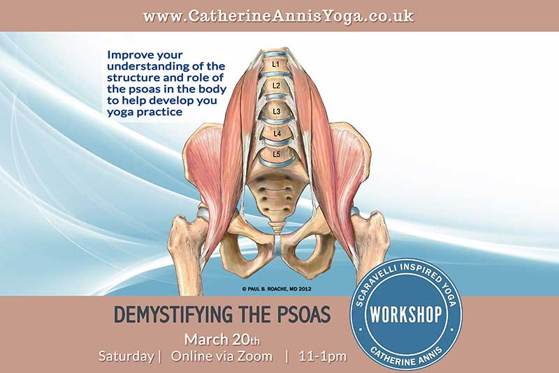 Scaravelli Inspired Yoga Workshop, Anatomy, Psoas Muscle, Catherine Annis