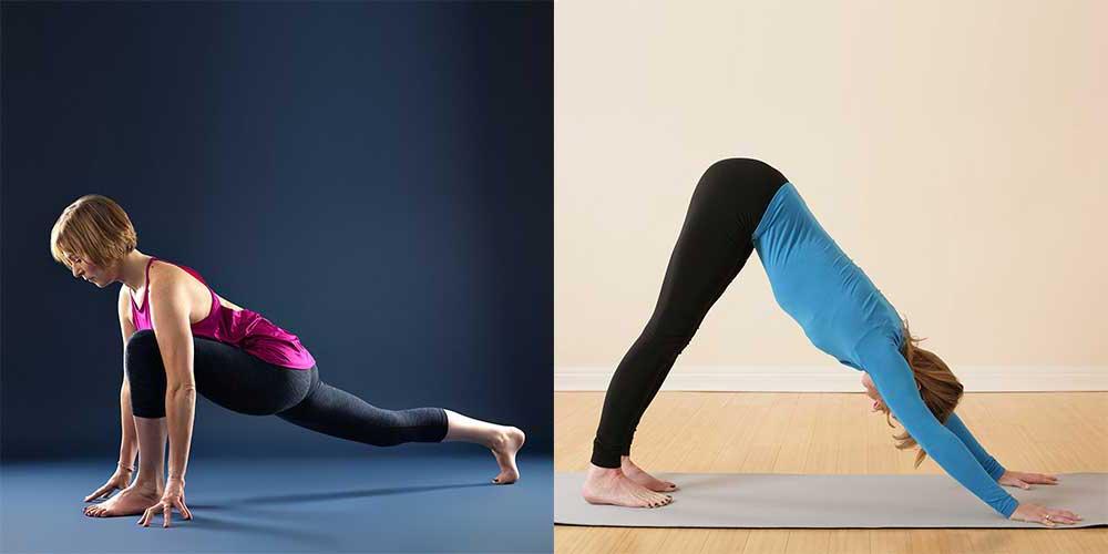 Scaravelli Inspired Yoga Workshop, Psoas, Online Zoom Classes, Anatomy, Catherine Annis