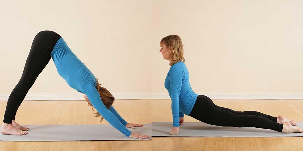 Scaravelli Inspired Yoga Workshop, Vagus Nerve, 2021, Catherine Annis