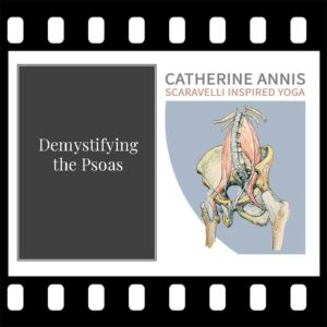 Scaravelli Inspired Yoga, Workshop Video, Psoas, Catherine Annis