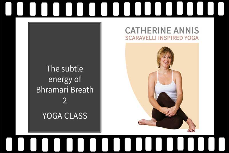 Bhramari Breath, Pranayama, Bumble Bee Breath, Catherine Annis Yoga, Video, Yoga Class