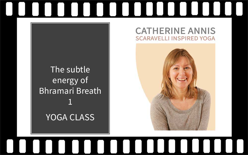 Bhramari Pranayama, Bumble Bee Breath, Catherine Annis, Scaravelli Inspired, Yoga Class video