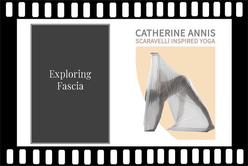 Scaravelli Inspired Yoga, Workshop, Fascia, Anatomy, Catherine Annis Yoga